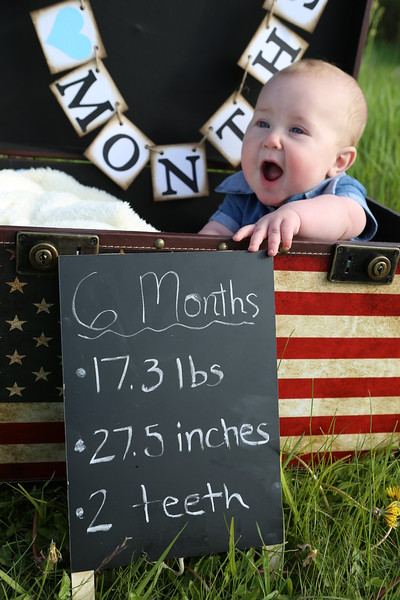 Evan 6 Month Portraits